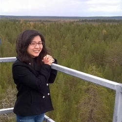 Aki Tsuruta overlooking forest from the ICOS measurement station in Pallas-Sammaltunturi.
