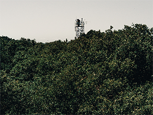 Two people standing on top of a measurement tower in the forest
